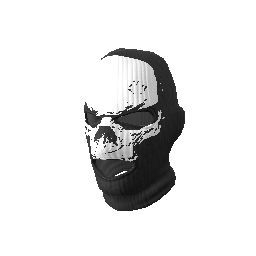 Heavy Assault Skull Mask We Got Skin
